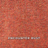 encounter_rust