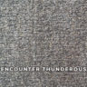 encounter_thunderous
