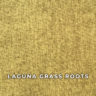 laguna_grass_roots